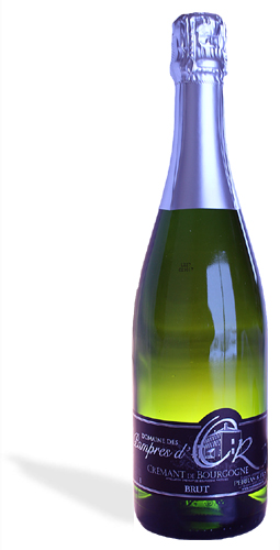 Crémant de Bourgogne - Vignoble PERRAS